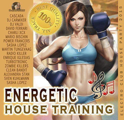 Energetic House Training (2015)