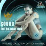 Sound Intoxication (2015)