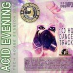 Acid Evening (2015)