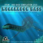 Megalodon Bass (2015)