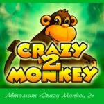 Автомат «Crazy Monkey 2» в клубе Вулкан