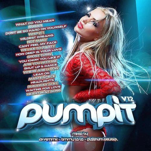 Pump It Vol 12 (Mixed by DJ Femme, Timmy Lala & Platinum Deejayz)