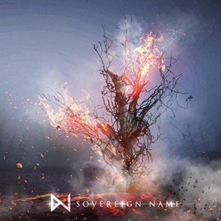 WhiteNoiz - Sovereign Name (2015)