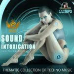 Sound Intoxication (2015)