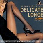 Delicate Longe: Urban Meditation (2015)