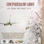 Crepuscular Light (2015)