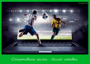 Спортивная жизнь